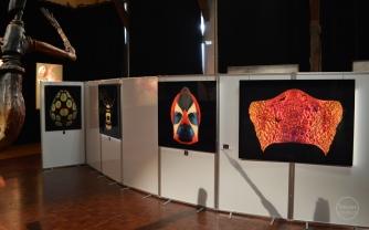 """Exposition """"Mosaïques"""" 2017, photographies de Pascal Goet."""